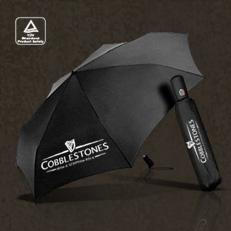 Regenschirm (Automatik) - Irish Folk